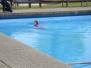 Anschwimmen 2015